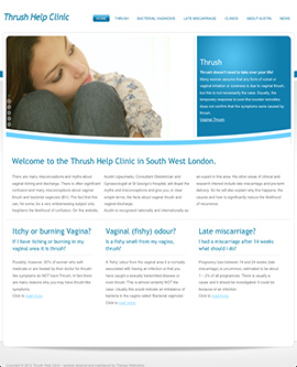 Some Website Examples Therapy Marketing